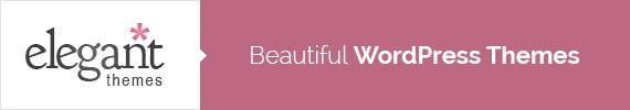 elegantthemes-divi-wordpress-theme